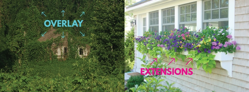Don't plant Kudzu in your Dynamics AX garden. Use extensions instead of overlays.