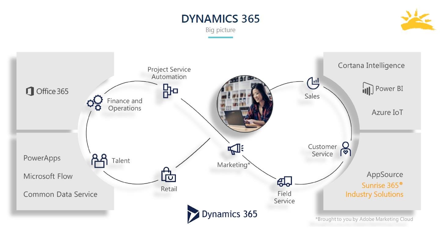 Big-picture view of Dynamics 365